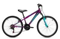 Clermont Tribal 24'' 18sp (300mm)  purple